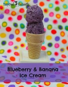 Blueberry Banana Ice Cream